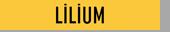 Villa World - Lilium logo