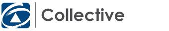 First National Real Estate Collective - Narellan logo