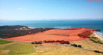 Tasmanian Abalone Farms, 12868 Tasman Highway Swansea TAS 7190 - Image 1