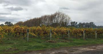 Thompson Vineyard 112 Old Comaum Road Coonawarra SA 5263 - Image 1