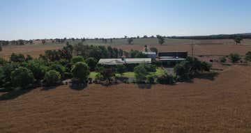 893 Deaths Lane Caragabal NSW 2810 - Image 1