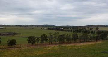 1098 Sandy Creek Road Caragabal NSW 2810 - Image 1