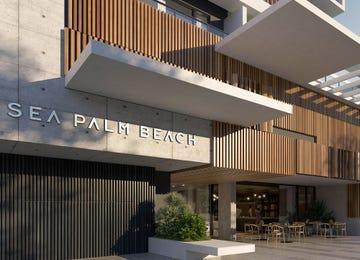 Sea Palm Beach Palm Beach