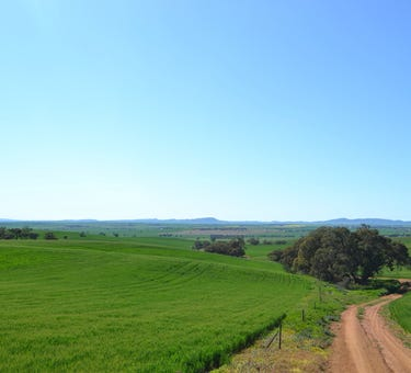 Lot 293 Collins Road, Murray Town, SA 5481