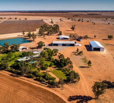 Jamea Aggregation, Trangie, NSW 2823