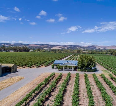 Matthews Vineyard 139 Little Road, Willunga, SA 5172