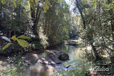 The Canopy, 247 Hogan Road Tarzali QLD 4885 - Image 2