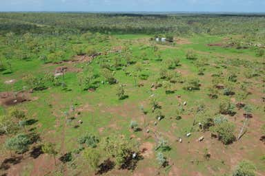 Forrest Hills Station, NT Perpetual Pastoral Lease 1190, Carpentaria Highway Daly Waters NT 0852 - Image 3