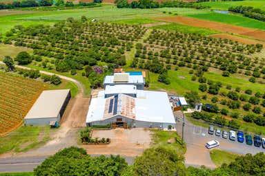 Wavehill Farm 592 Cudgen Road Cudgen NSW 2487 - Image 3
