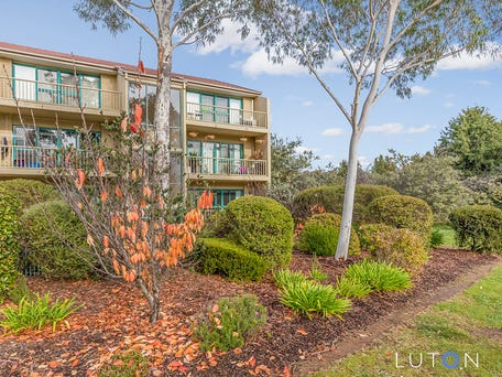 41/53 McMillan Crescent, Griffith
