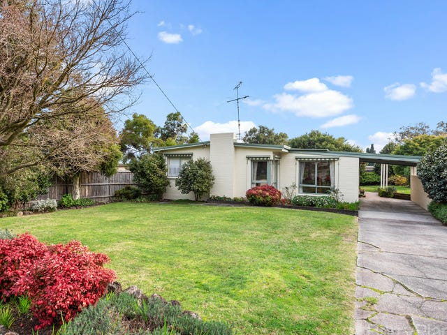 81 Forest Road, Ferntree Gully, Vic 3156