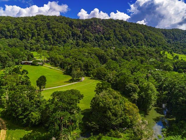 753 Wilsons Creek Rd, Wilsons Creek, NSW 2482