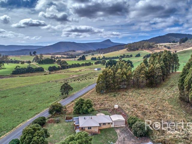 364 Mathinna Plains Road, Ringarooma, Tas 7263