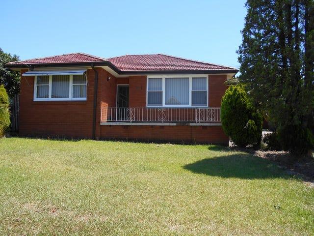 54 Throsby St, Fairfield Heights, NSW 2165