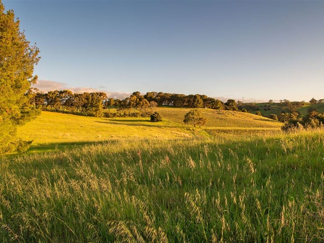 193 valley road, Angaston, SA 5353
