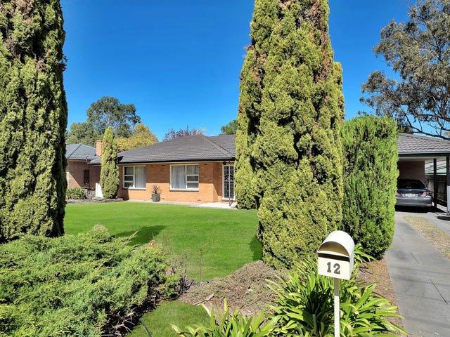 12 Beaconsfield Road, Eden Hills, SA 5050