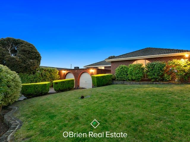 8 Jeffs Court, Endeavour Hills, Vic 3802