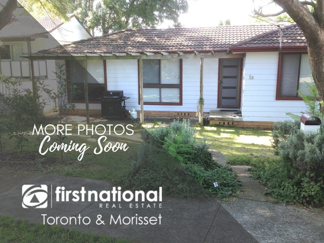 1B Melrose Street, Lorn, NSW 2320
