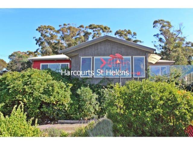 25596 Tasman Highway, St Helens, Tas 7216