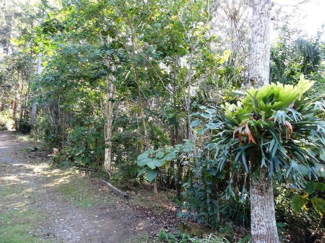 473 Boggy Creek Road Thora, Bellingen, NSW 2454