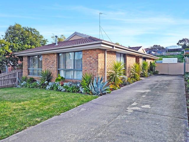 362 Rodier Street, Ballarat East, Vic 3350