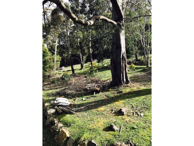 12 Clegg Road, Fern Tree, Tas 7054