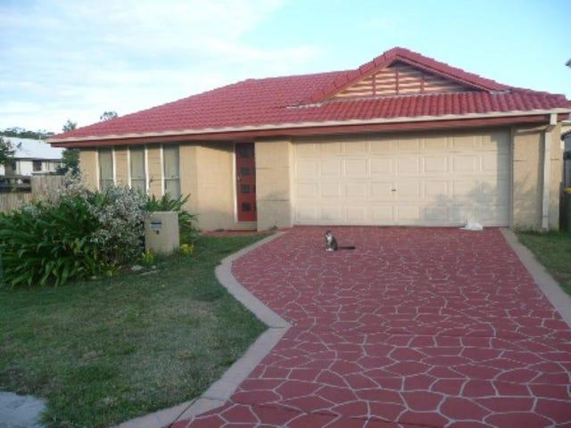 15 Heron Close, Coomera, Qld 4209
