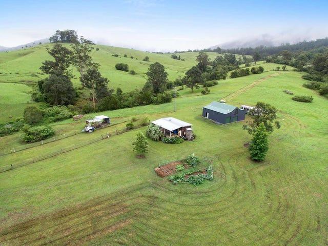 Lot 113 Calara Lane, Pappinbarra, NSW 2446