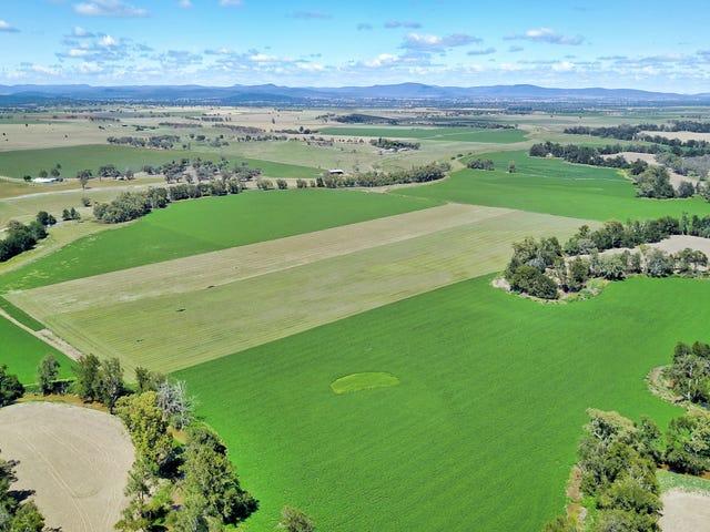832 Rivers Road, Canowindra, NSW 2804