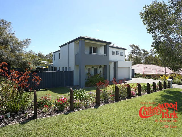 6 Haimes Court, Collingwood Park, Qld 4301