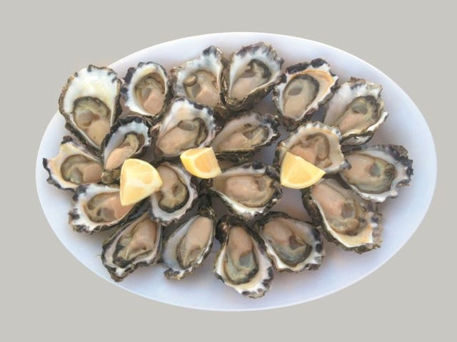 J & J Ravell Oysters -, Tuncurry, NSW 2428