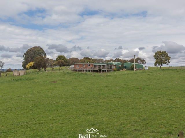 647 Preolenna Road, Moorleah, Tas 7325