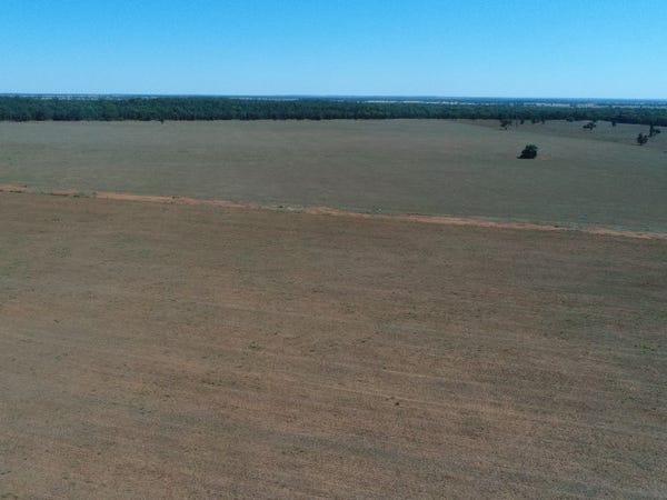 The Ranch Grassmere Road, Condobolin, NSW 2877