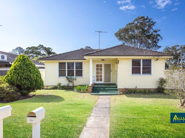 25 Willan Drive, Cartwright, NSW 2168