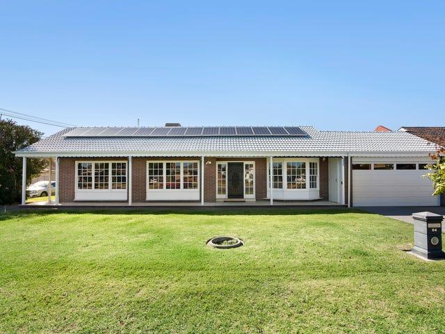 64 Pine Avenue, Novar Gardens, SA 5040