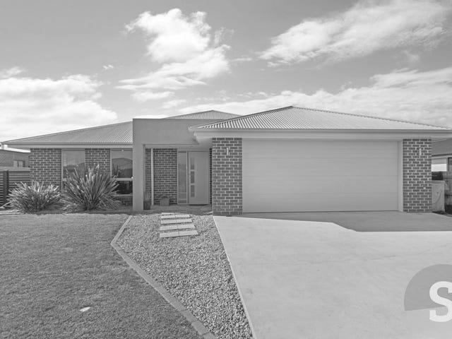 29 Mulgrave Street, Perth, Tas 7300