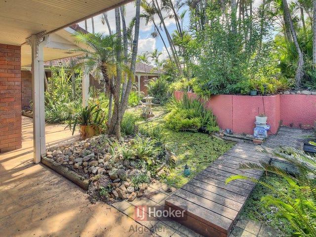 93 Jackson Road, Sunnybank Hills, Qld 4109