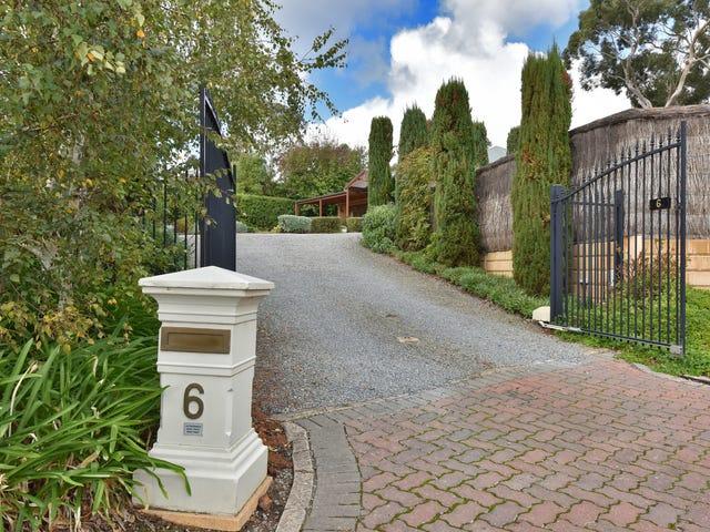 6 Alexandra Place, Craigburn Farm, SA 5051