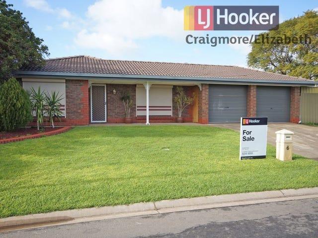 6 Mander Crescent, Craigmore, SA 5114