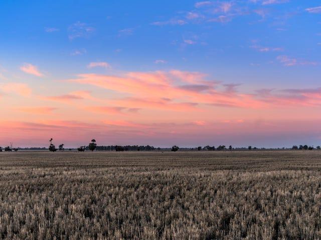 'New Merrigal' Collie-Bourbah Road, Merrigal, NSW 2827