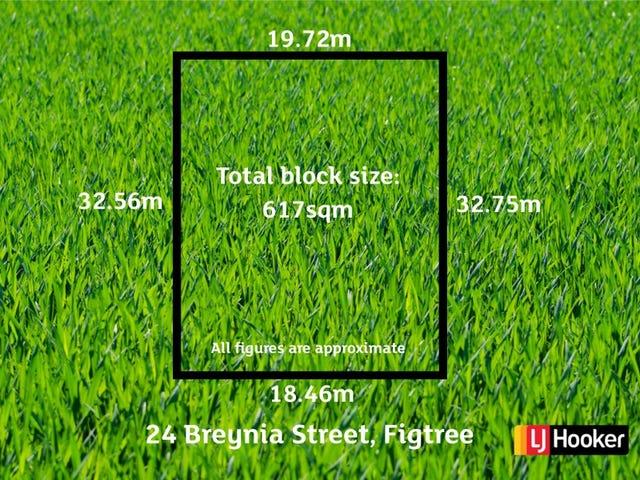 24 Breynia Street, Figtree, NSW 2525