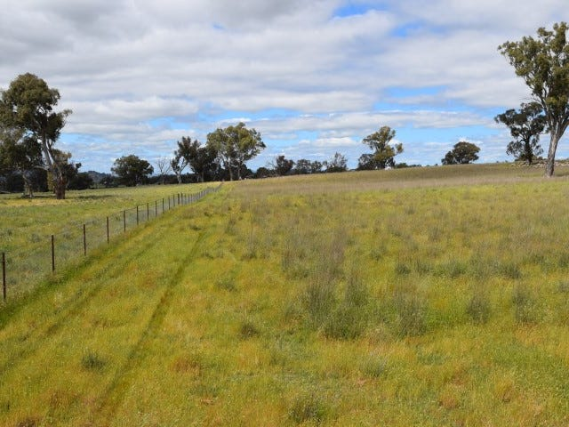 Bendenine Road, Binalong, NSW 2584