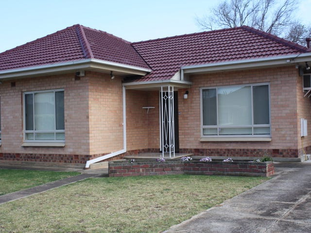 22 Shandon Avenue, Seaton, SA 5023