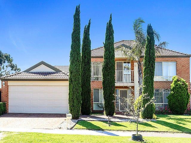 53 Prospect Hill Drive, Bundoora, Vic 3083