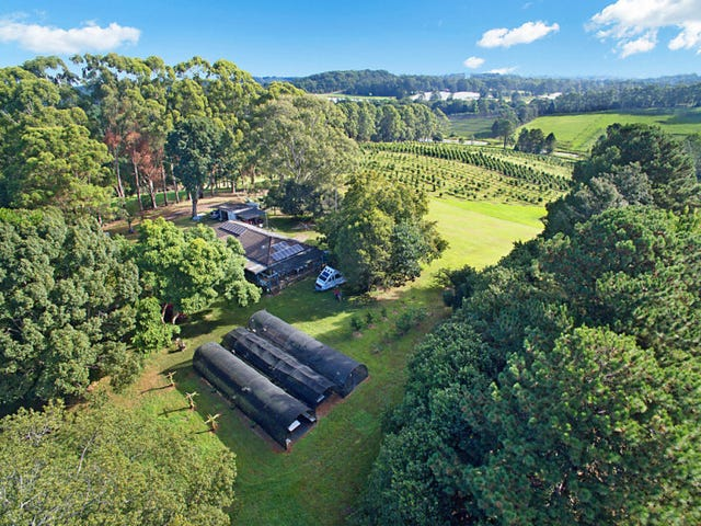 53 McLeans Ridges Road, Wollongbar, NSW 2477