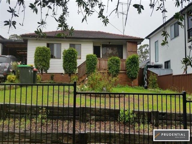 33 Lyndley Street, Busby, NSW 2168