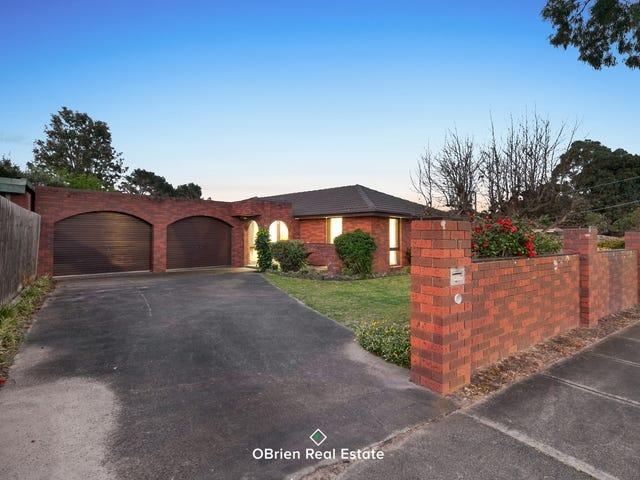 17 Isaac Smith Crescent, Cranbourne, Vic 3977
