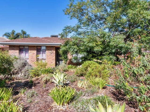 35  Oxford Terrace, Blakeview, SA 5114