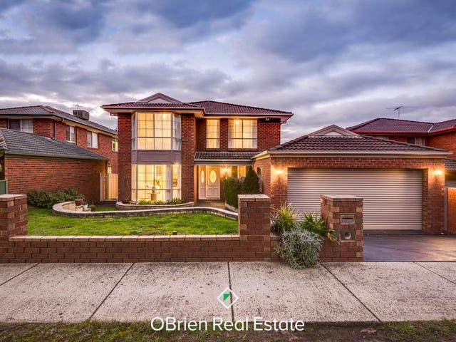 91 Georgette Crescent, Endeavour Hills, Vic 3802