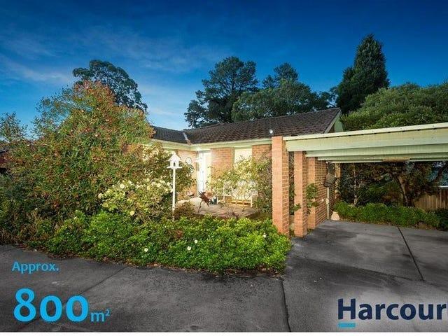 11 Napier Close, Wantirna, Vic 3152